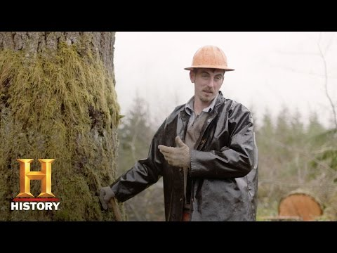 America: Promised Land - Scandinavian Loggers in Oregon (Bonus) | History