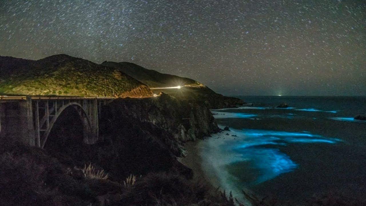 Glowing phytoplankton lights up California coast