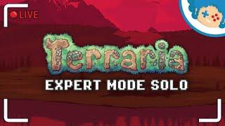 Terraria: EXPERT MODE SOLO #1 - Na pohybel! | Zapis LIVE