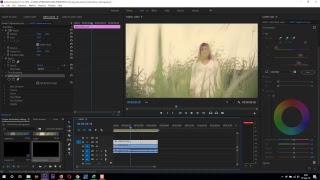 Cara Coloring menggunakan adobe premiere cc2018 - andi antony