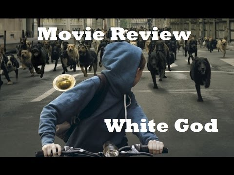 White God (2015) Movie Review