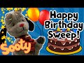 It's Sweep's Birthday! 🎂   Sooty and Sweep   The Sooty Show