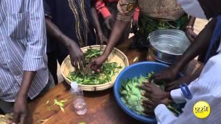 Recipe for Success - Food Training