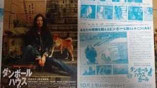 ダンボールハウスガール 2001 映画チラシ 米倉涼子 2001年10月6日公開 ...