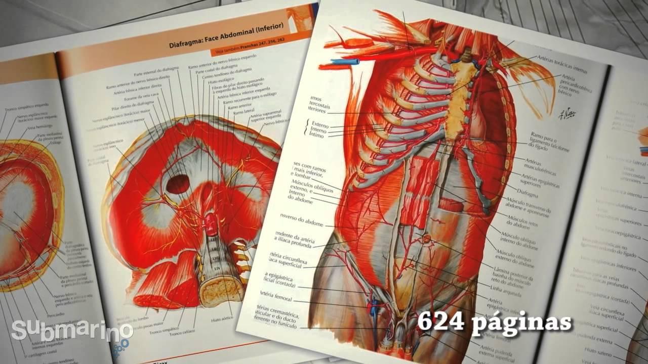 Submarino.com.br   Livro - Atlas de Anatomia Humana - YouTube