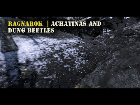 Ragnarok :  Best areas to Find Achatinas and Dung Beetles