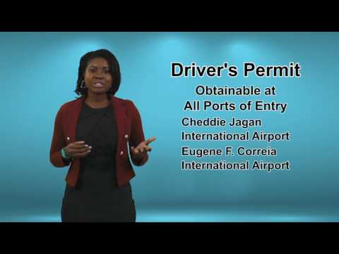 Drivers Permit Jan 27 2017