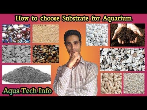 Step 4: How to choose Aquarium Substrate