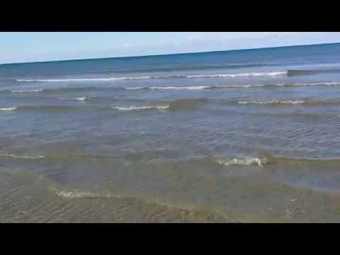 Australia Cape Tribulation