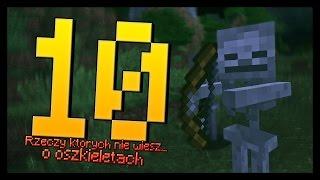 Minecraft - 10 Rzeczy, których nie wiesz o szkieletach.