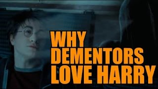 Why do Dementors love Harry Potter so much?! - Harry Potter Fan Theory!
