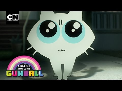 Here Kitty | Gumball | Cartoon Network