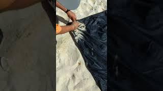 Archimhead beach towel