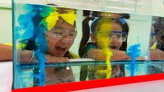 Jannie and Ellie Sink or Float Home DIY Science Experiments for Kids | Science Projects Videos