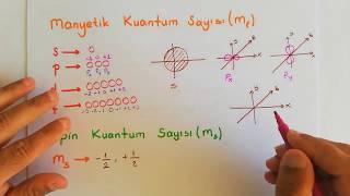 KİMYA   Atomun Kuantum Modeli (Manyetik ve Spin Kuantum Sayısı)