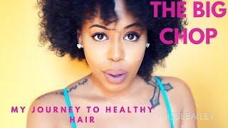 BIG CHOP   HEAT DAMAGED HAIR