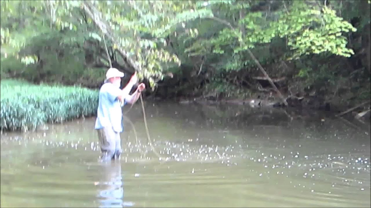 Little creek fishing for big smallies youtube for Small creek fishing