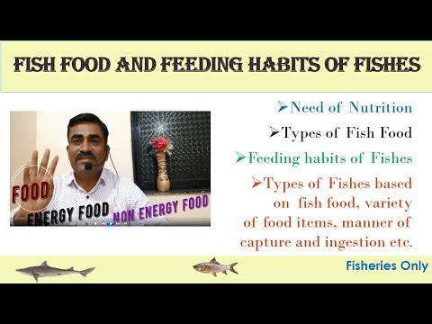Food And Feeding Habits Of Fishes
