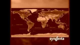 Documental Maíz - Fungicidas - Cliente Syngenta