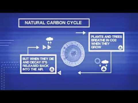 Welcome to the Idea of Carbon Removal