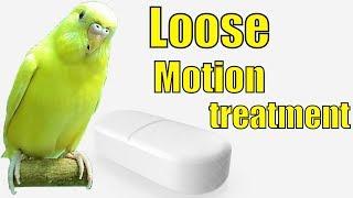 Birds Ko Loose Motion Hon Ya  Vaccination Krni Ho to Ye Medicine Use Kr Skte Hain