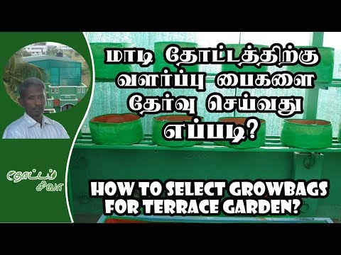(Tamil) Terrace Gardening Basics - Part-3 - Grow Bags Selection