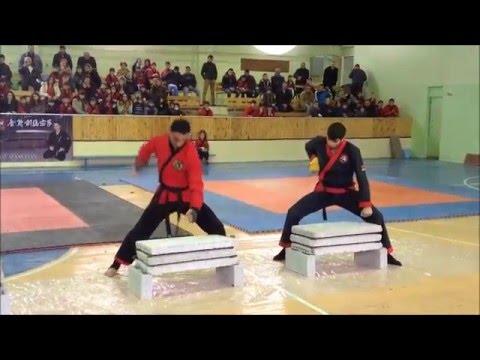 Tameshivari aykikendo karate armenia 2015