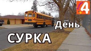 УТРО перед школой/ УРОК в американской школе/ АМЕРИКАНСКАЯ ДОМАШКАVLOG