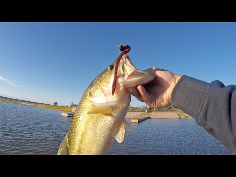 Trick Worms Bass Fishing Domination