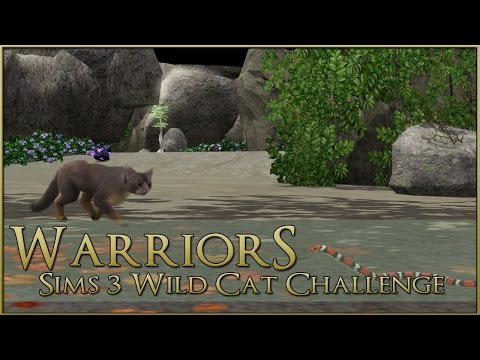 Scarlet Dangers in the Sands || Warrior Cats Sims 3 Legacy - Episode #46