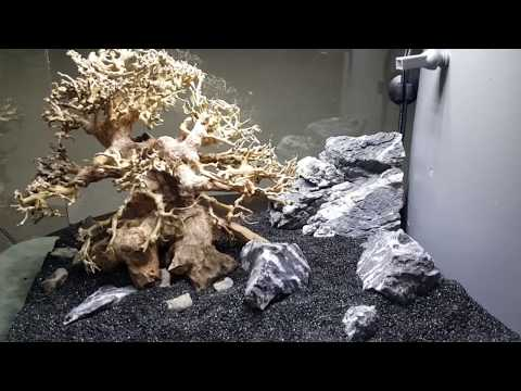 bonsai-nano-tank-build---part-3---hardscape
