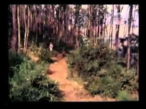 Pillai Nila - Raja Magal Roja Magal.flv