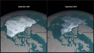 Baixar Disappearing Arctic sea ice