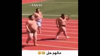 Fat sumo wrestlers running ( TRY NOT TO LAUGH HARD)