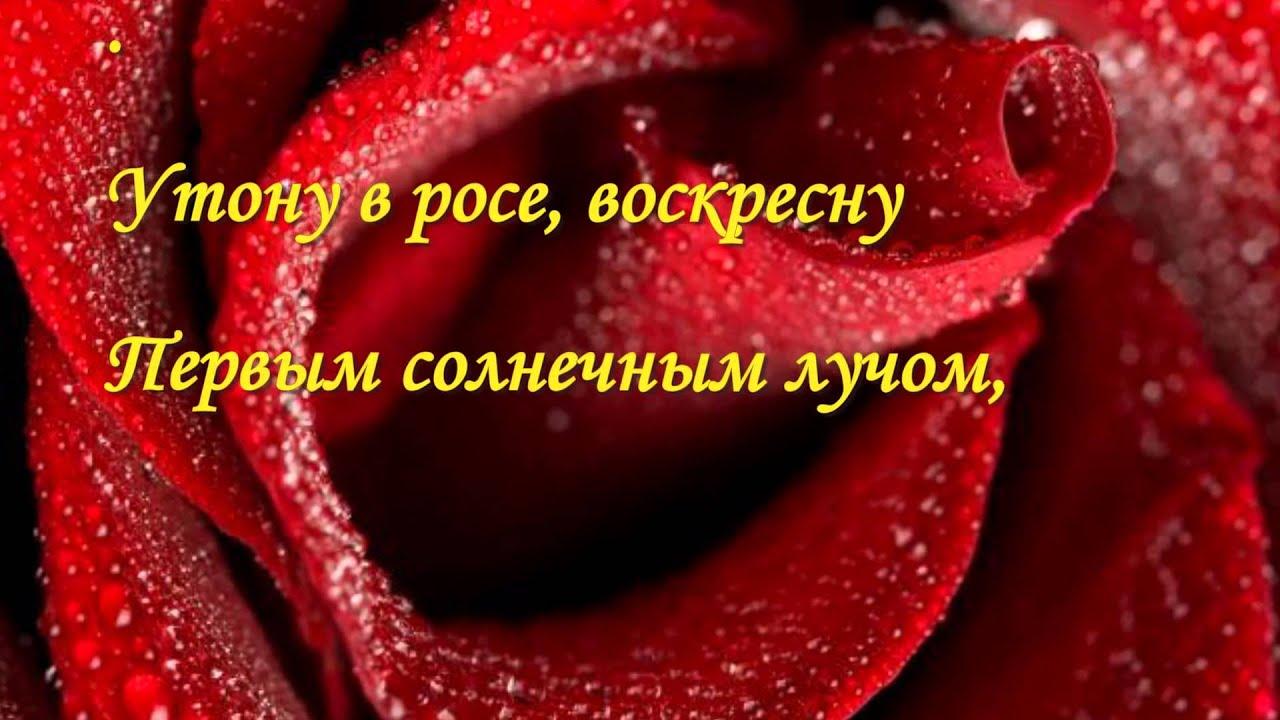 шикарные цветы картинки