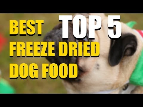5-best-freeze-dried-dog-food-in-2020-that-you-should-buy-today!