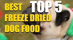 5 Best Freeze Dried Dog Food in 2020 that You SHOULD Buy Today!