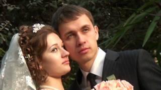 Love-Markov*s day