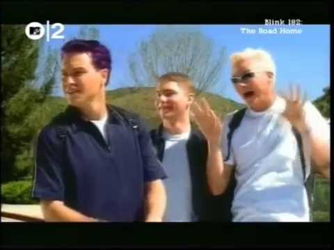 blink-182 / MTV The Road Home 2000