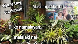 Whole Day Gardening With Husband And Apo By Lola Malyn