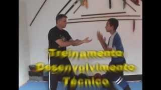 Kung Fu Golpes Faça Sua Aula Agora