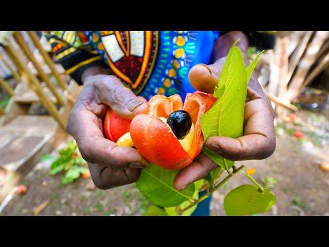 Rastafari Village Food  100% ITAL FOOD + Jamaican Herb Tour  with Rasta I-Win!