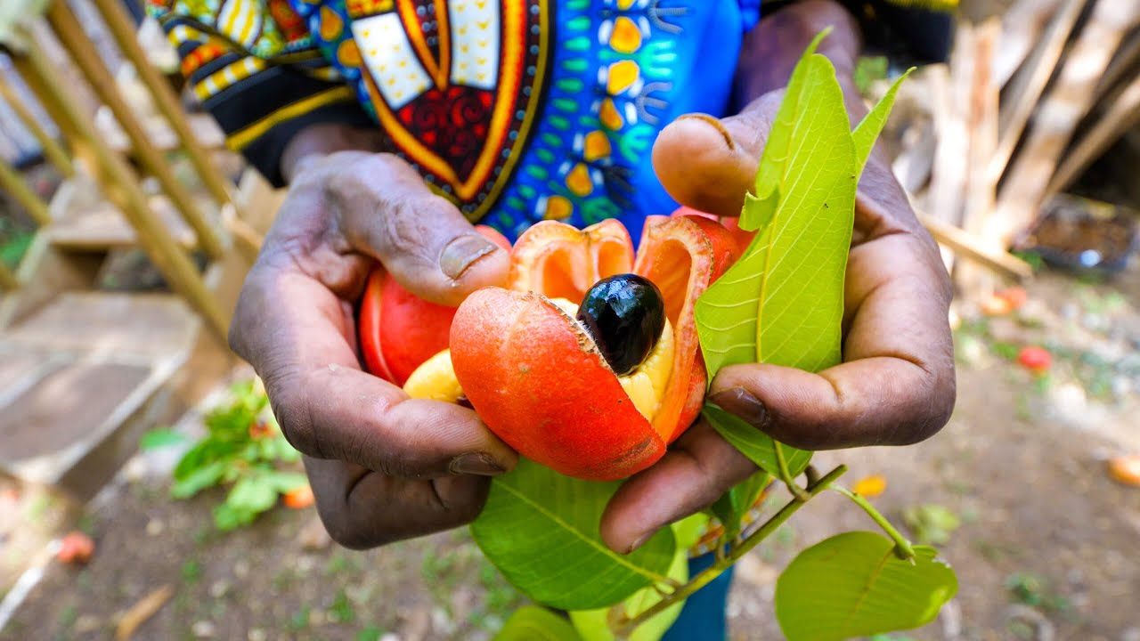 Rastafari Village Food ?? 100% ITAL FOOD + Jamaican Herb Tour ? with Rasta I-Win!
