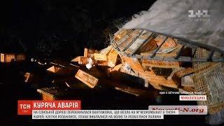 Замість бійні - на волю: фура з тисячами курей перекинулася на Миколаївщині