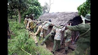 Who duped Kenyans who settled at Mau Forest