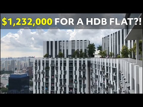 the-pinnacle@duxton-$1,232,000-for-a-hdb-flat?!