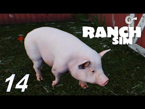 RANCH SIMULATOR #14 Was für eine Schweinerei #Ranch Sim #gameplay #deutsch |