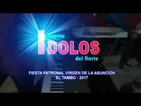 LOS NUEVOS ÍDOLOS DEL NORTE  _  la duda