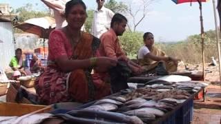 Sindhdurg Tourism Life & Food