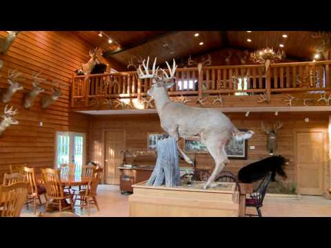 Hunting Illinois Deer- Golden Triangle Whitetail- Illinois Monster Bucks